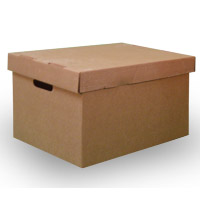 File Box with Top