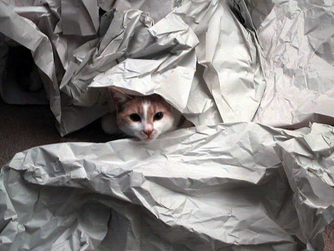 Where to buy packing paper